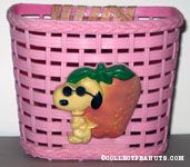 Joe Cool with Strawberry Pink Bicycle Basket