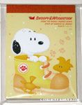 Snoopy in shoe with Woodstocks Notepad