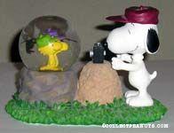 Snoopy taking Woodstocks Photos