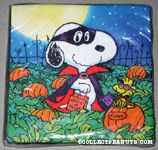 Snoopy and Woodstock in pumpkin patch