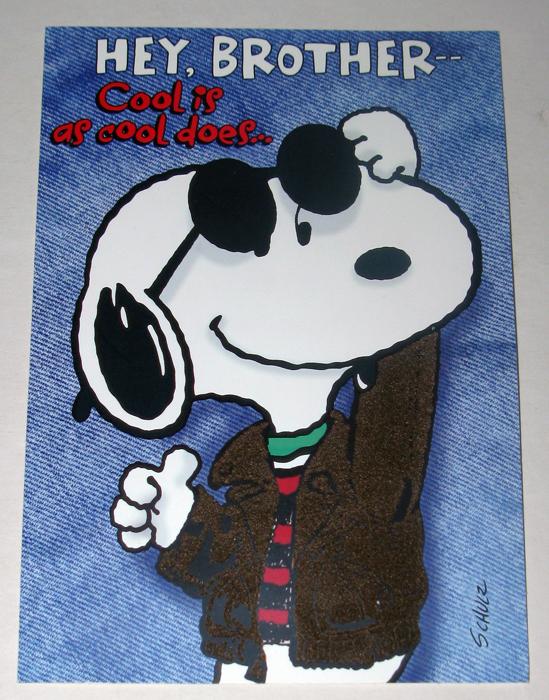 Snoopy Joe Cool Brother Birthday Greeting Card