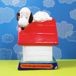 There's no place like Snoopy's Doghouse