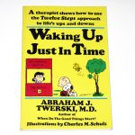 Waking Up Just In Time Book