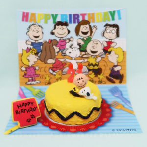Snoopy & Charlie Brown Birthday Cake