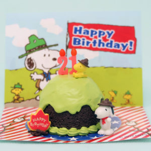 Snoopy Beaglescouts Birthday Cake