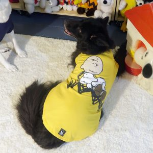 Tosh wearing the Yellow Charlie Brown with sleeping Snoopy T-shirt*