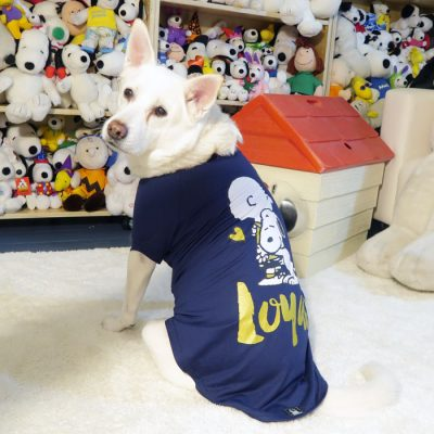 Daisy wearing the Dark Blue Loyal Charlie Brown and Snoopy T-shirt