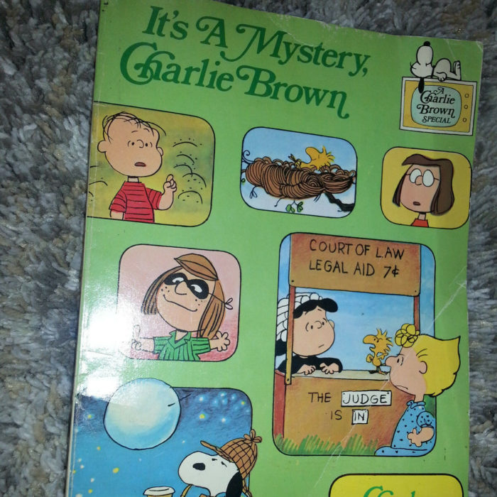 Peanuts Animated Special Book