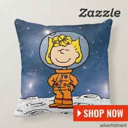 zazzle-ad-space-pillow