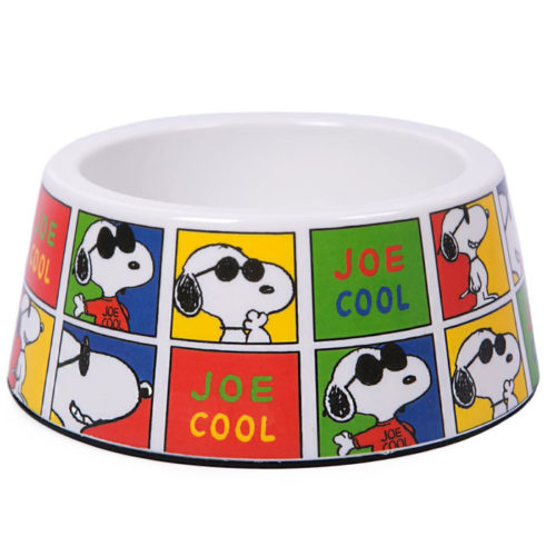 snoopy-dogdish