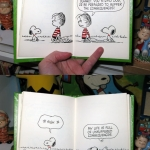 Snoopy on Consequences