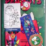 Peanuts Fun Pack Giveaway