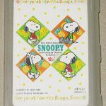 Snoopys in squares with fruit Playing Cards