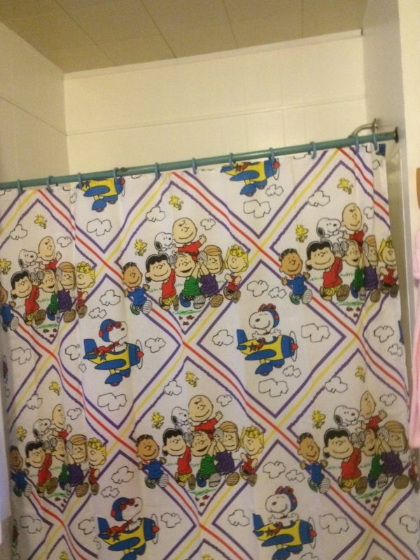 Curtains Ideas snoopy shower curtain : Paula's Peanuts Bathroom - CollectPeanuts.com