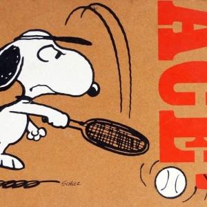 Snoopy Cork Bulletin Board