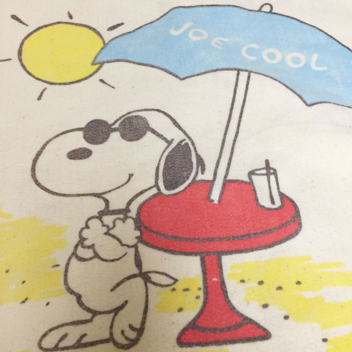 Peanuts Blanket by Chatham
