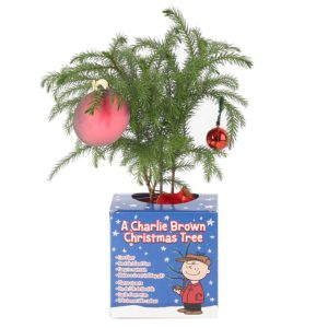 Peanuts Quick Gifts