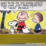 Peanuts Schmid Musical