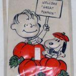 Peanuts Hallmark Switch Plate