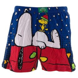 Click to shop Peanuts Underwear at Amazon and support our site.